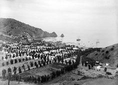 """Circa 1897 view of the Avalon Bay """"tent city"""" on Santa Catalina Island."""