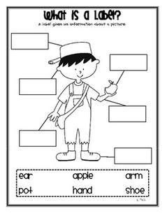 Here is a little Johnny Appleseed labeling sheet you can use to help teach your kids that a label gives us information about a picture. Perfect to use when learning about apples and Johnny Appleseed in September. :){Johnny Appleseed clip art by Lisa Lita} Preschool Apple Theme, Apple Activities, Preschool Ideas, Professor, September Activities, Apple Unit, Worksheets, Johnny Appleseed, Apple Seeds