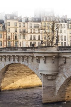 Paris - January Morning - Pont Neuf