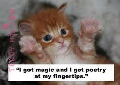 this is cute for my english teacher cat lover friend dee!!