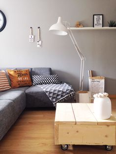 i think that dyi coffee table with a removable middle block for storage inside would be perfect!!