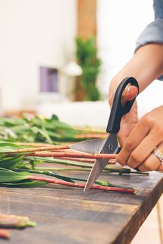 cutting flowers at home, how to trim flowers