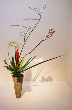Ikebana Ikenobo with a string of Orchids | Flickr - Photo Sharing!