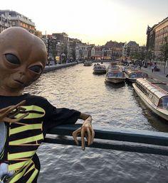 Alien Aesthetic, Aesthetic Grunge, Aliens Meme, Alien Photos, Apple Watch Wallpaper, Hypebeast Wallpaper, Alien Art, Meme Faces, Psychedelic Art