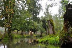 Marais Poitevin - France's green Venice in Poitou-Charentes