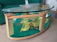 homes with beautiful fish tanks - Now hiring M.C.A looking for online marketers training is available plus free flyers business cards and brochure designs twitter/ pin-tress training as well visit http://directmca.com for details