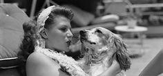 0 Rita Hayworth (1918 - 1987) and her dog