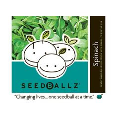 Seedballz Spinach (1x 4 Oz)
