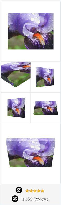 Purple Iris Canvas Print | Zazzle @sylvestermouse