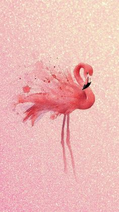 Hintergrund iphone Wall Selecting A Carpet That Suits Your Lifestyle When selecting carpet, one must Flamingo Wallpaper, Summer Wallpaper, Animal Wallpaper, Pink Wallpaper, Flamingo Painting, Flamingo Art, Pink Flamingos, Cute Wallpaper Backgrounds, Cute Wallpapers