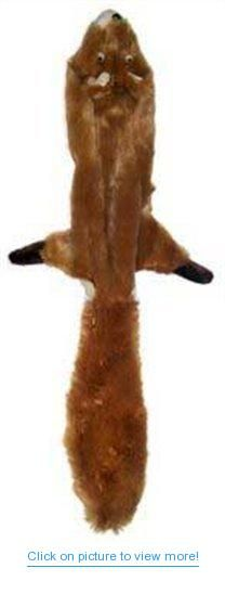 Skinneeez Stuffing Free Dog Toy Squirrel contains one 14 inch long stuffing free dog toy with two squeakers. These toys satisfy your dog's natural hunting instinct. The realistic design prov ides a flip flopping action that dogs love Tug Of War, Free Dogs, Animal Logo, Animal Design, Dog Toys, Small Dogs, Squirrel, Pet Supplies, Giraffe