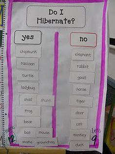 hibernating animals chart