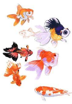 painting goldfish before bed. good night (not me, wish I knew the original pinne… - Goldfish Fish Drawings, Animal Drawings, Art Drawings, Watercolor Fish, Watercolor Paintings, Illustrations, Illustration Art, Fish Art, Painting & Drawing