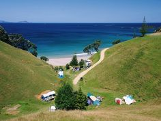 Whananaki, our valley,our camping spot and piece of paradise.