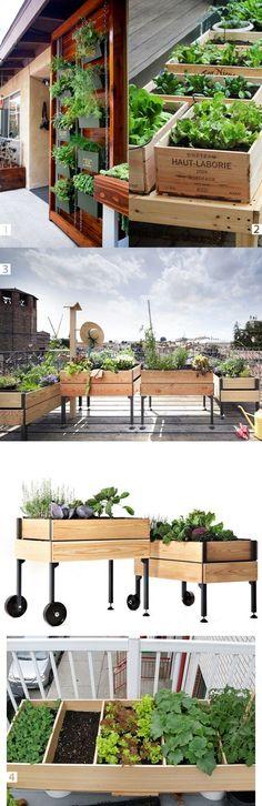 aranzacja-balkonu-ziola