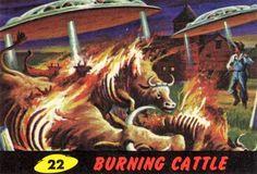 The ultraviolent 1962 'Mars Attacks' trading cards that inspired the Tim Burton movie Mars Attacks, Tim Burton, Alien Art, Classic Monsters, Science Fiction Art, Pulp Art, The Martian, Sci Fi Art, Film