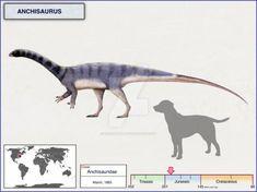 Anchisaurus by cisiopurple