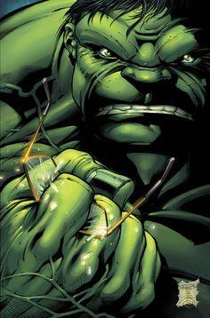 The Hulk by Paul Pelletier