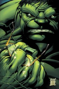 The Hulk by Paul Pelletier