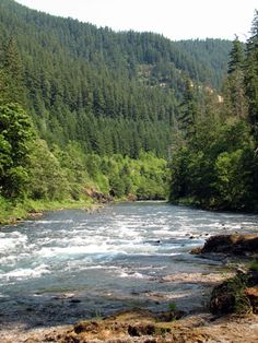 Clackamas River near Estacada Oregon