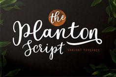 Planton Script from FontBundles.net