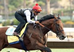 American Pharoah  Daily Racing Form  American Pharoah