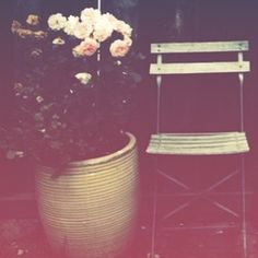 flowers + vintage chair . outdoor