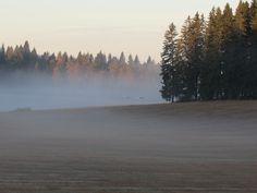 Morning mist at september. Viljakkala.~Finnish nature through my eyes - Sari Lapikisto