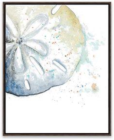 Artissimo Designs Sand Dollar Framed Printed Canvas