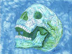 Lü†hårt • Skull Series • 71316