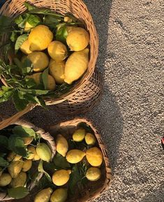 Lemons are the perfect summer fruit the color of sunshine Summer Aesthetic, Aesthetic Food, Aesthetic Yellow, Simple Aesthetic, Italian Summer, Italian Life, Summer Dream, Photo Instagram, Mellow Yellow
