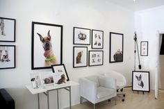 Paw Prints » OH MY DOG! Photography