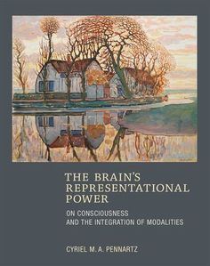 The Brain's Representational Power: On Consciousness and the Integration of Modalities (MIT Press)