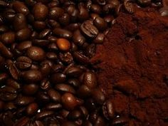 Coffee Grounds on Garden Plants-Nitrogen Boost-Pest Control-Feed the Worms