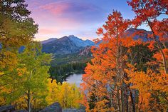 rocky mountain national park in the fall | Bear Lake,Longs Peak,Aspens,Fall,Autumn,Rocky Mountain National Park ...