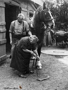 Horse and Man - Exploring the bond between equines and their people.