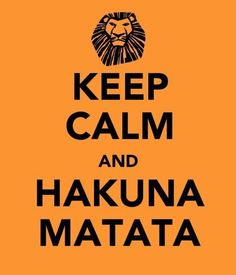 """Reminds me of my Brother!  His favorite saying is to laugh and say """"Hakuna Matata!""""   And I'm pretty sure he's got it right!"""