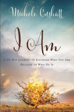 In His eyes, we are beautifully the way He designed us to be! A review of: I AM: A 60-Day Journey to Knowing Who You Are Because of Who He Is by Michele Cushatt  http://www.publishersmarketplace.com/members/booksnreviews/index.html#20170115162302