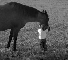 """""""A gentle heart is tied with an easy thread. Horses, Mindfulness, Gentleness, Animals, Live, Heart, Quotes, Quotations, Qoutes"""