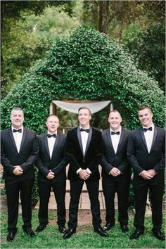 Velvet groom
