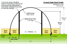 How to build an arched 'cattle panel' trellis