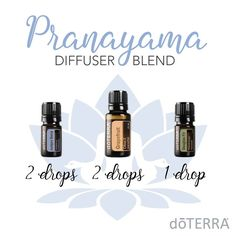 "According to yogic practice, ""Prana"" is Breath or vital energy in the body. On subtle levels prana represents the pranic energy responsible for life or life force, and ""ayama"" means control. So Pranayama is ""Control of Breath"". Juniper Berry and Grapefruit give a fresh, subtly sweet scent which is soothing and commanding at the same time. Diffuse this blend anytime you feel a need for a sense of quiet strength and renewal."