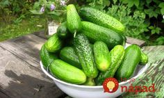 7 Health Benefits of Cucumber. Carrot And Ginger, Cardamom Benefits, Ingrown Hair Remedies, Ingrown Hairs, Cucumber Benefits, Home Canning, Best Sandwich, Farm Gardens, Fruit