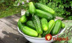 7 Health Benefits of Cucumber. Ginger Apple, Carrot And Ginger, Cardamom Benefits, Ingrown Hair Remedies, Ingrown Hairs, Cucumber Benefits, Home Canning, Best Sandwich, Farm Gardens