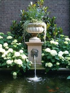 gorgeous - fountain flanked by hydrangeas. i like the idea of using white flowers because of all the shade.  just use colors in containers on the porches