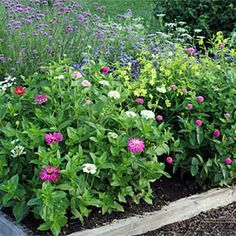 Gardener's Supply: Details for two gardens that ensure bouquets from summer to fall. Uses the square-foot gardening concept.