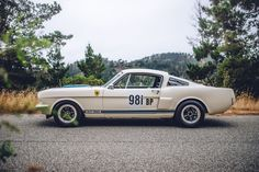Driving the World's Most Perfect 1965 Ford Mustang Shelby GT350R