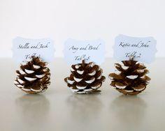Des pommes de pin pour marquer le nom des invités