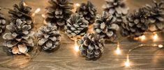 Männynkävyistä joulukoristeita Christmas Crafts, Stuffed Mushrooms, Vegetables, Ideas, Stuff Mushrooms, Vegetable Recipes, Thoughts, Veggies