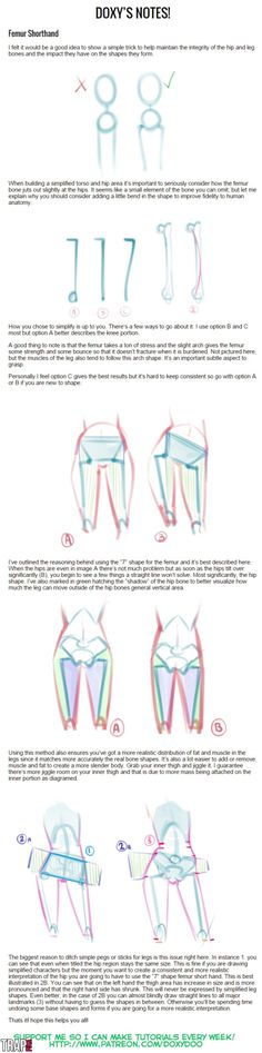 Femur Shorthand by mldoxy anatomy Drawing Reference Poses, Anatomy Reference, Drawing Poses, Drawing Tips, Hand Reference, Body Anatomy, Anatomy Art, Character Drawing, Character Design